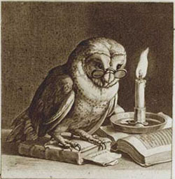 Lehigh University Philosophy - Studious owl